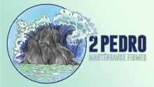 2 Pedro - Llamado